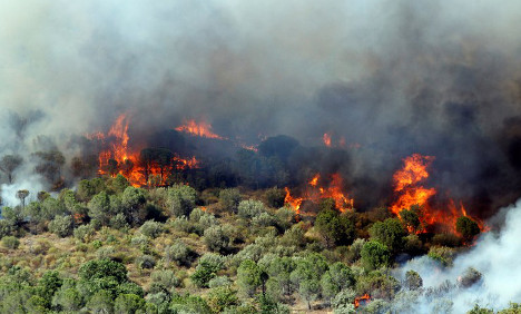 Wildfires burn 1,000 hectares in south western France
