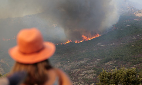 Corsica bushfire leaves 500 hectares scorched