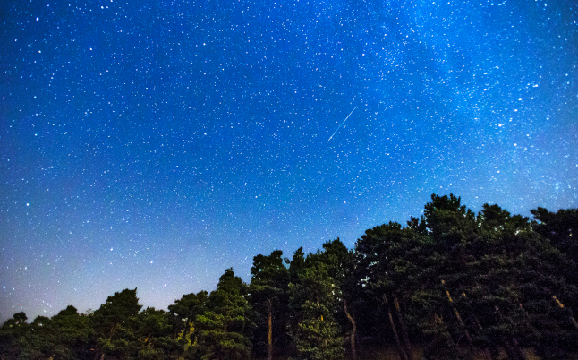 Stargazing: Top tips for watching the Perseid meteor shower in Sweden