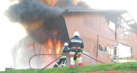 Herd of cows killed in fire on Swiss farm