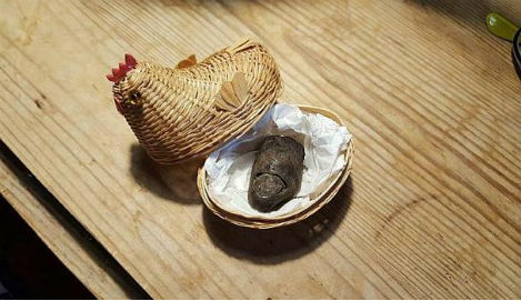 Danish bog mummy's missing toe returned after 60 years