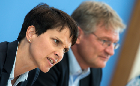 Far-right AfD loses support for first time in months