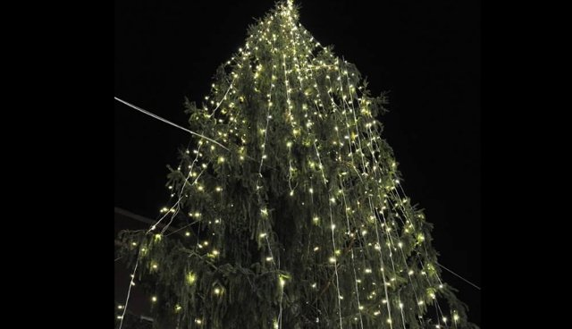 Is Rome's Christmas tree really the ugliest in the world?