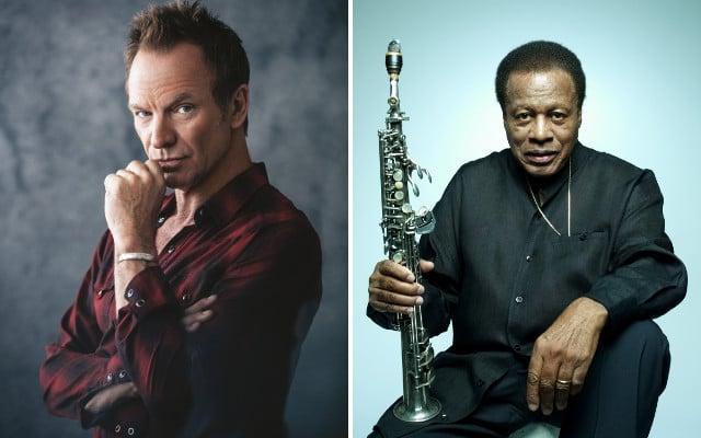 Sting wins Sweden's prestigious Polar Music Prize