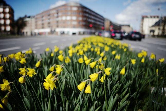 Denmark set for warmest day so far this year