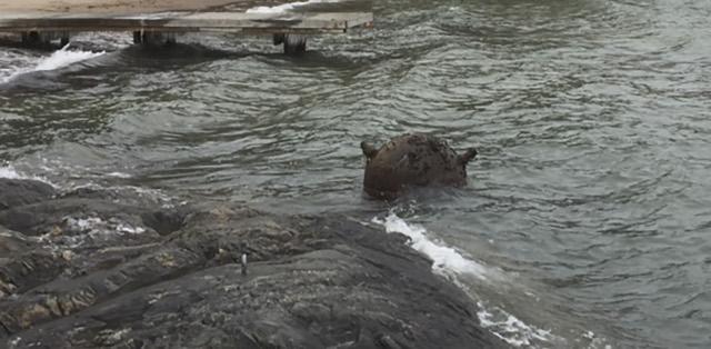1930s naval mine found near swimming spot in Stockholm archipelago