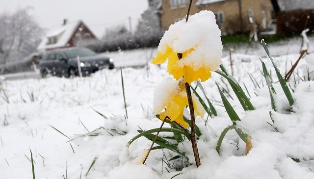 White Easter: Sweden wakes up to snow and record low temperatures