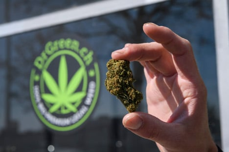 Swiss oasis for legal cannabis, without the high