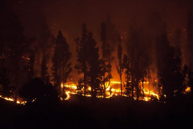 German man jailed for sparking Canary Island wildfire by burning toilet paper