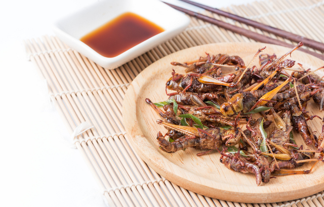 Locusts for dinner? Switzerland allows sale of insect-based foods