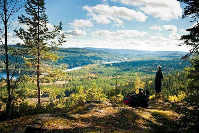 Off the beaten track in Finnskogen, Eastern Norway