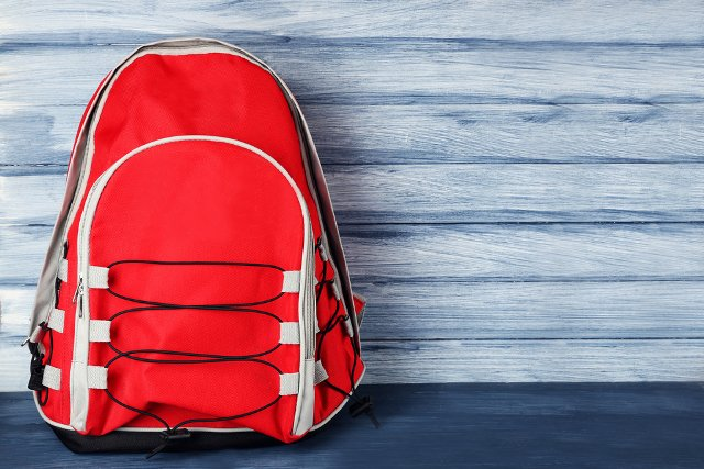 Backpacks banned at Swiss concerts following Manchester attack