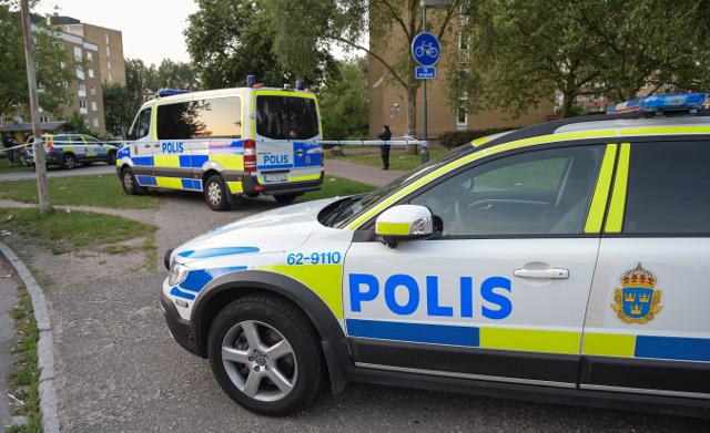 5,000 criminals in Sweden's vulnerable areas: police
