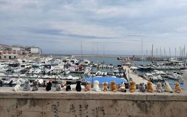 Why an army of toy cats has appeared in an Italian seaside town