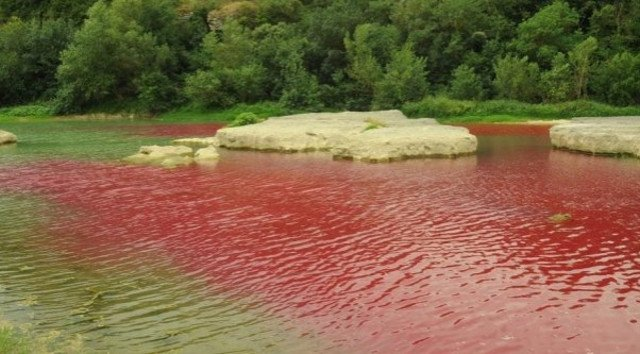 River in France turns blood red… but there's no need to panic