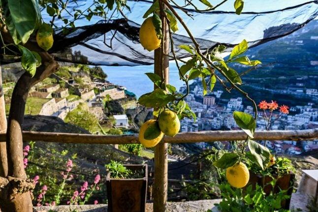 Nine delicious Italian summer delicacies you have to taste