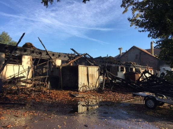 Suspect arrested for arson attacks that killed 24 horses