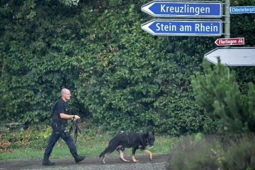Swiss chainsaw attacker still on the run