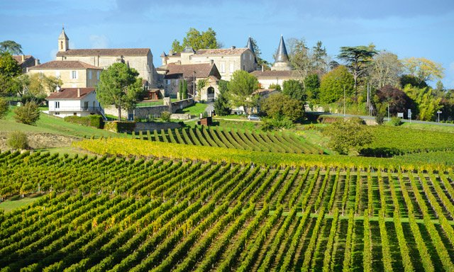 French wine production at 'historically low' levels