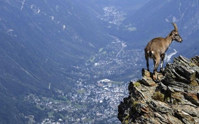 Western Europe's highest peak Mont Blanc shrinks (again)