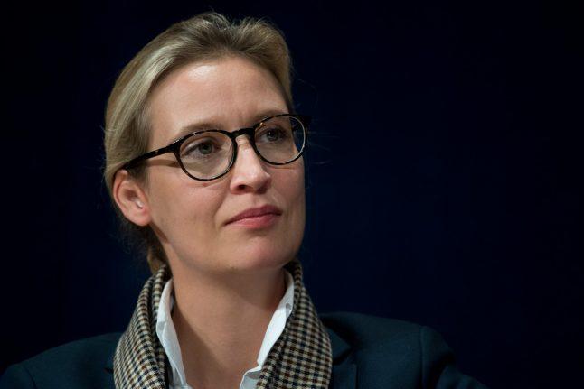 AfD leader called Merkel 'a pig tasked by WWII victors to keep Germany down': report
