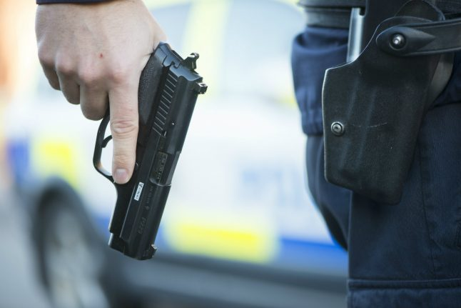 Swedish police fired warning shot at man armed with sword: report
