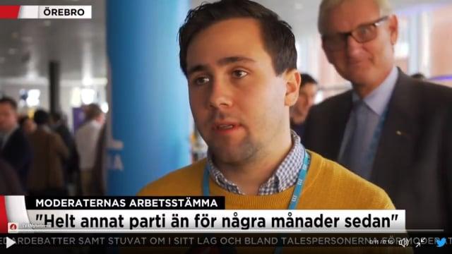 Watch: Swedish ex-PM Carl Bildt photobombs an interview and it's a bit weird