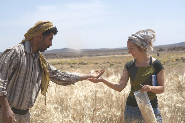 Danish archaeologists find 14,000 year-old bread in Jordan