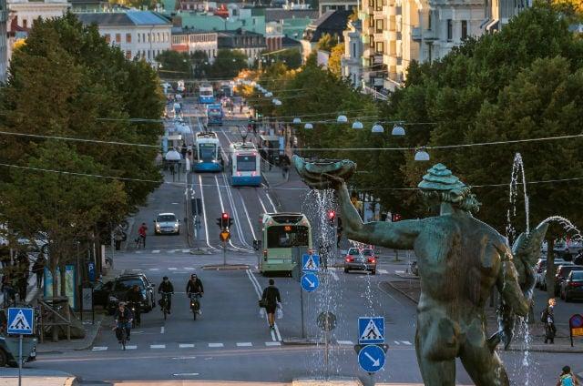 Elk shot after entering Gothenburg's clubbing district late at night