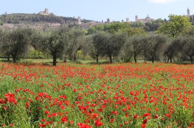 Weekend Wanderlust: Exploring Umbria by bike