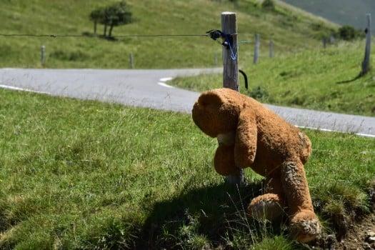 Rival demos in southwest France over killing of bear