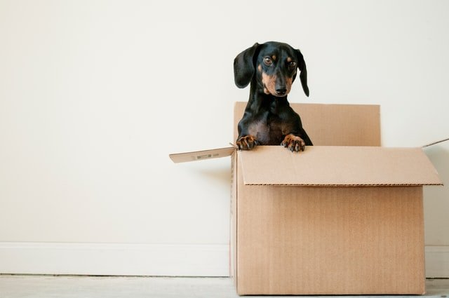 Checklist: Everything you need to do when you move house in Sweden