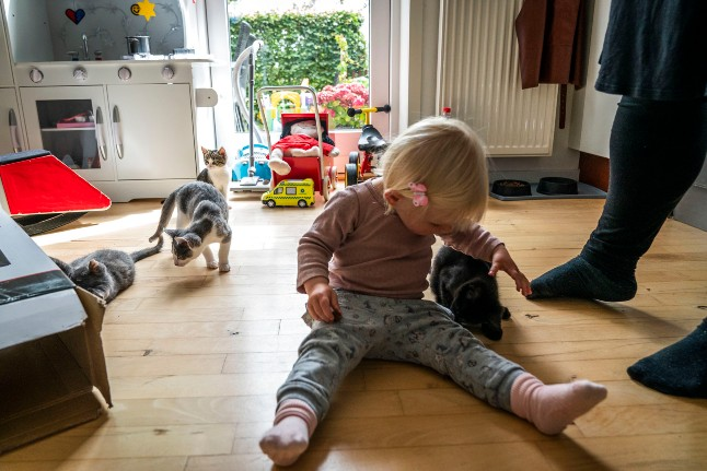 Freelancers to get Covid-19 child sick pay under new Danish scheme