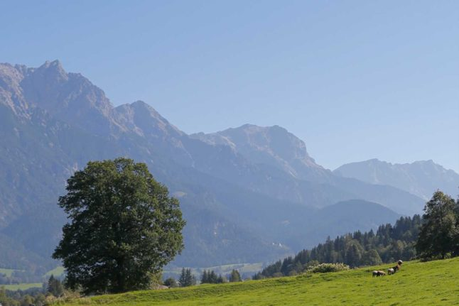 Today in Austria: A roundup of the latest news on Tuesday
