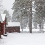 Say it ain't snow! Wintry weather returns to Sweden
