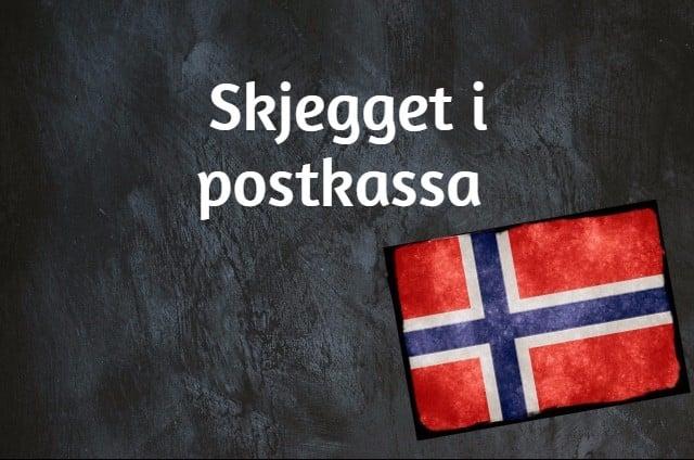 Norwegian phrase of the day: Skjegget i postkassa