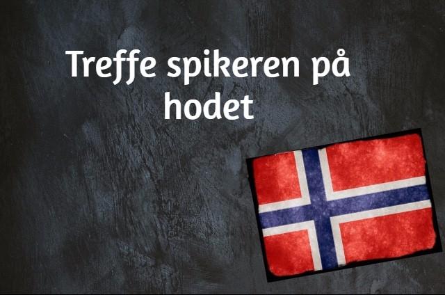 Norwegian phrase of the day: Treffe spikeren på hodet