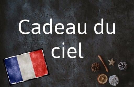 French phrase of the Day: Cadeau du ciel
