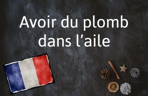 French phrase of the day: Avoir du plomb dans l'aile