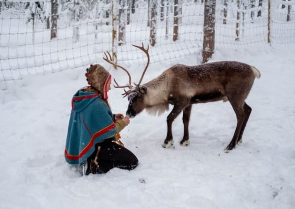 How Norway's wind farms are harming reindeer herders