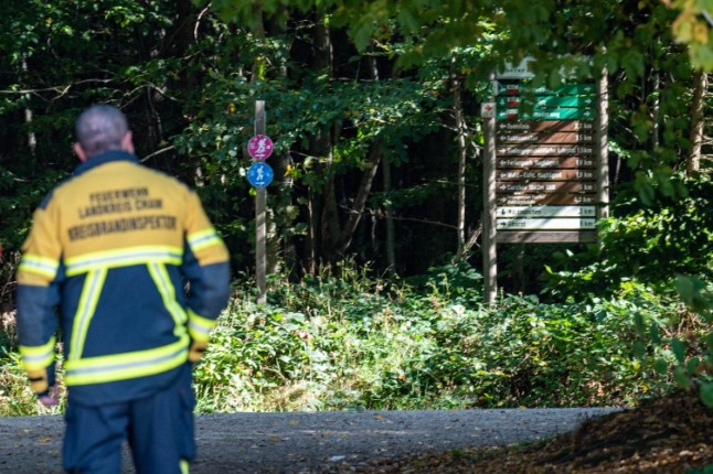 'A miracle': German girl found after two days missing in remote woods